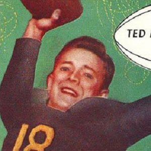 Ted Marchibroda