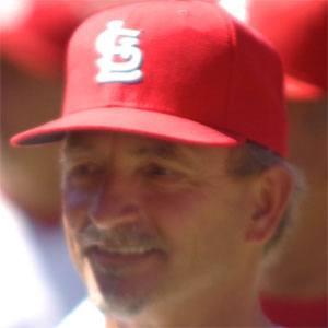 Joe Pettini