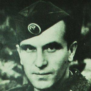 Mihajlo Apostolski